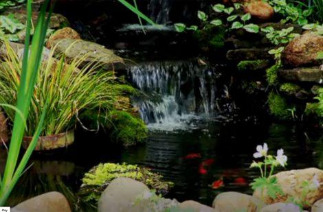 Kentucky S Secret Gardens Ket