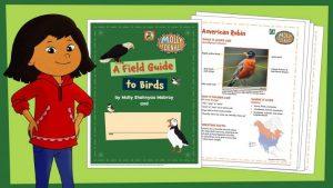 Summer activities workbook