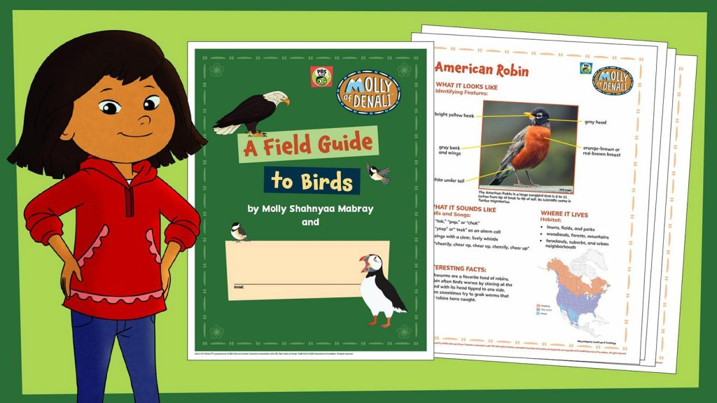Molly Field Guide