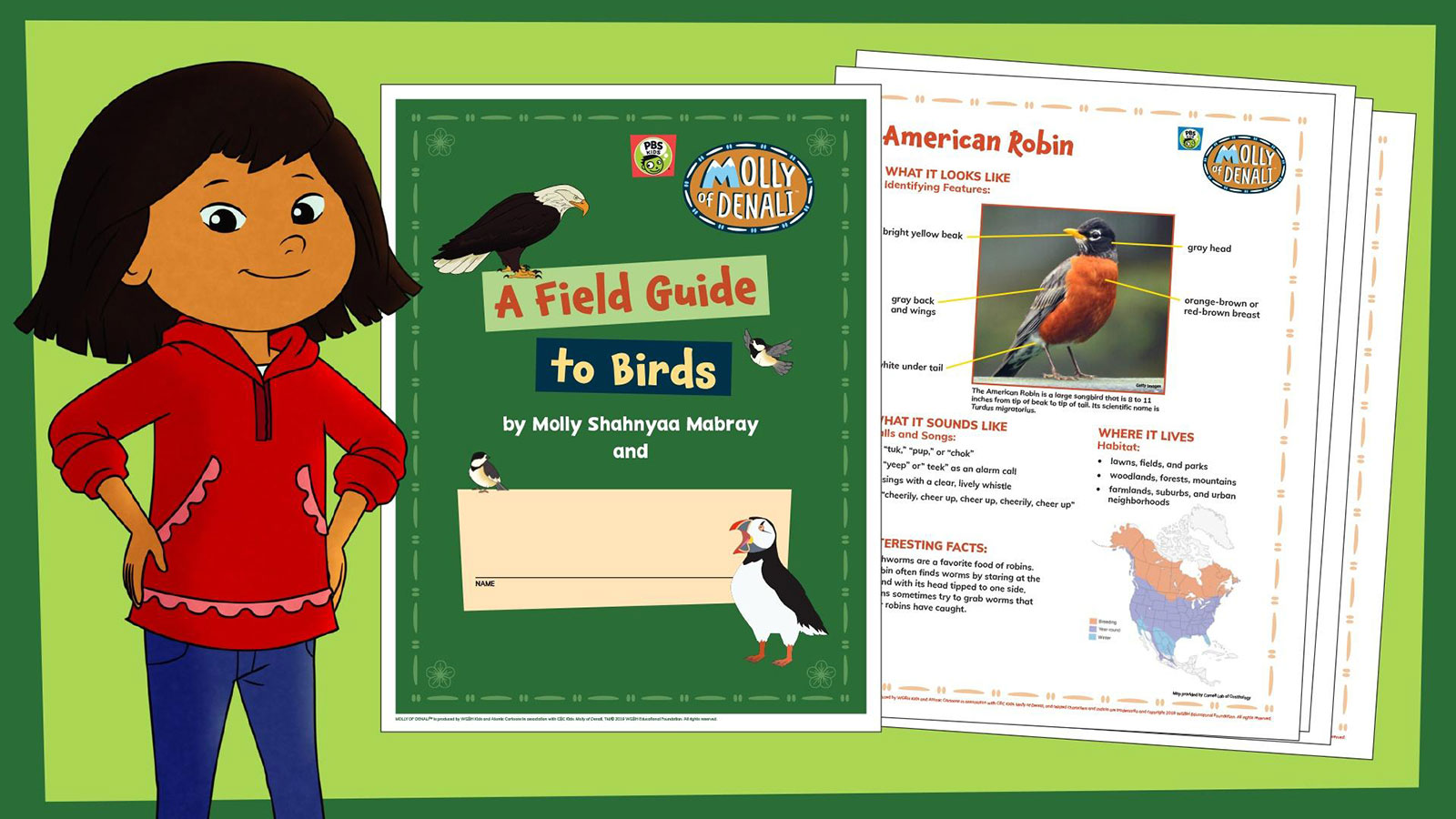 Molly Field Guide