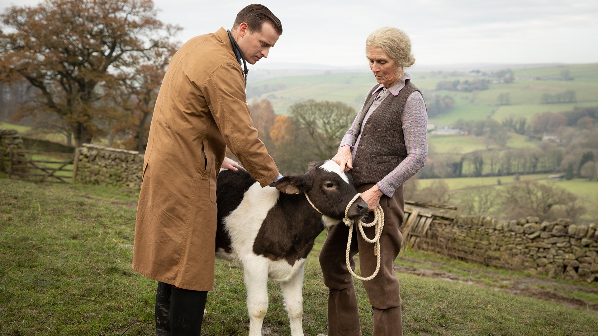 Samuel West as Siegfried Farnon with a client and a calf