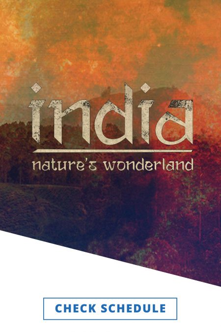 The program logo for India - Nature's Wonderland in a mottled white font on a mottled background of oranges and browns.