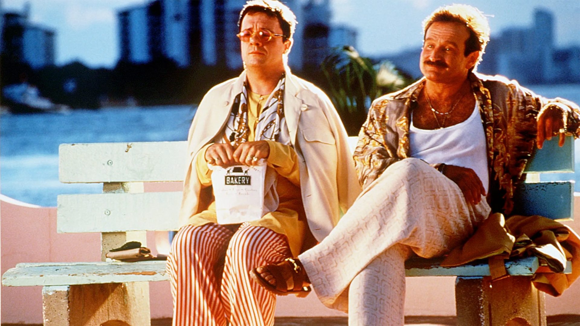 Nathan Lane and Robin Williams sitting on a bench in a scene from The Birdcage